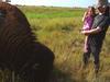 a trip to see buffalo