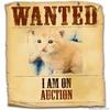 I am on auction, please bid!